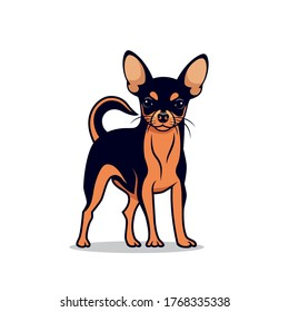 Chihuahua dog - isolated vector illustration