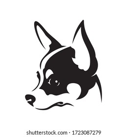 Chihuahua face - isolated vector illustration