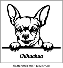 Chihuahua - Peeking Dogs - breed face head isolated on white - vector stock