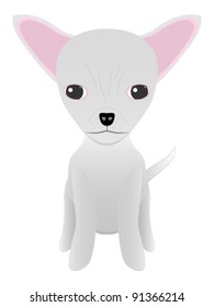 Chihuahua puppy sitting - illustration