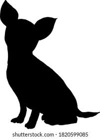 Chihuahua silhouette shadow image cute little dog pets