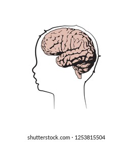 Child head with brain. Vector medical flat line illustration. White background.
