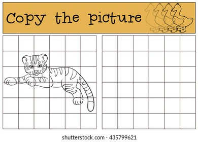 Children games: Copy the picture. Little cute baby tiger lays and smiles.