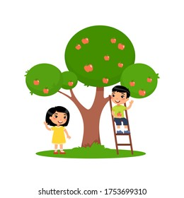 Children picks apples. Cute Asian boy sits on the stairs, little  girl stands next to an apple tree. Harvest concept.