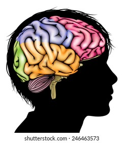 A child's head in silhouette with a sectioned brain. Concept for child mental, psychological development, brain development, learning and education or other medical theme