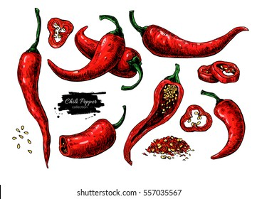 Chili Pepper hand drawn vector illustration. Vegetable artistic style object. Isolated hot spicy mexican pepper, sliced and crushed pieces, seed. Detailed vegetarian food drawing. Farm market Paprika