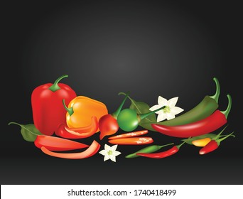 chili vector, Different types of peppers Chili is a vegetable that has a spicy flavor.