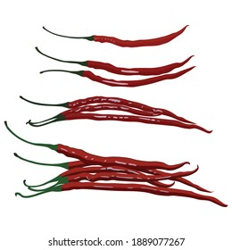 Chilis Vegetable Illustration Vector Set Taken Several Angles Isolated On White Background Good To Use For Food Magazine, Brochure And Ingredients