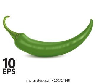 Chilli green. Vector illustration
