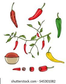 chilli peppers vector set art illustration