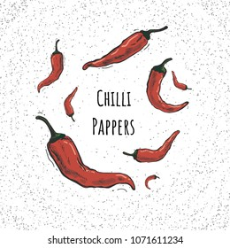 Chilly peppers, chilli Vector hand drawn vector illustration. Hand drawn pepper for card, menu, banner or other.