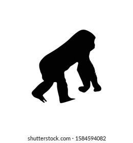 Chimp trendy style vector silhouette icon illustration sign isolated on white background for animal site