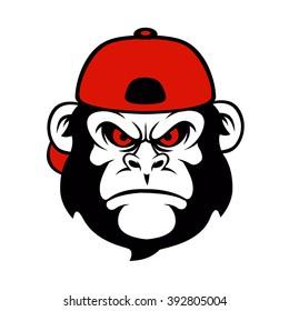 chimpanzee in a cap