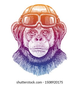 Chimpanzee, monkey wearing vintage aviator leather helmet. Image in retro style. Flying club or motorcycle biker emblem. Vector illustration, print for tee shirt, badge logo patch