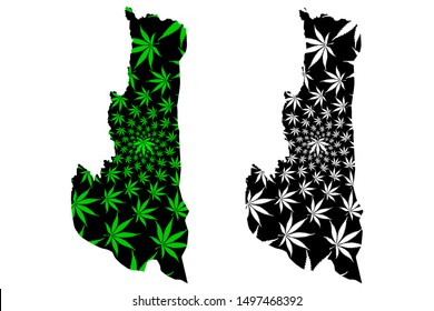 Chin State (Administrative divisions of Myanmar, Republic of the Union of Myanmar, Burma) map is designed cannabis leaf green and black, Chin map made of marijuana (marihuana,THC) foliage