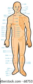 Chinese acupuncture points, with native hieroglyphic names, vector illustration