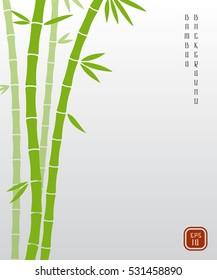 Chinese bamboo or japanese bambu asian vector background