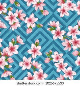 Chinese cherry blossom patter, blue geometric seamless vector background. Tender pink sakura branch textile, apricot blossom fabric, japanese cherry spring flowering trees tablecloth pattern.