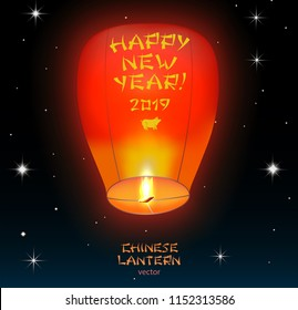 Chinese lantern 2019 year lantern, which flying in the night sky star with silhouette of dog, symbol of the year and congratulations on it