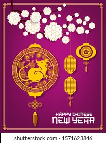 Chinese lanterns with Lunar New Year rat vector design. Golden mouse symbol of China animal zodiac with papercut pattern of coins and flowers, Asian paper lamps with blooming plum branch, endless knot