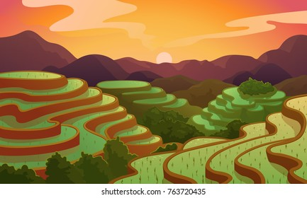 Chinese rice field terraces in mountains landscape. Vector rice or tea plantation on cascades field on mount in China, Vietnam or Philippines with green trees forest trees and sunrise nature scenery