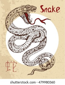 Chinese zodiac symbol of hand drawn Snake with lettering. Horoscope and astrological vector sign of asian new year calendar. Graphic drawing with engraved animal. Chinese hieroglyph means Snake