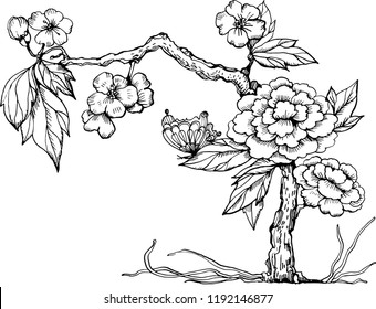 Chinoiserie peonies tree.  vector ink illustration. Chines illustration for natural, wedding, scrapbooking and other design. Black and white illustration.