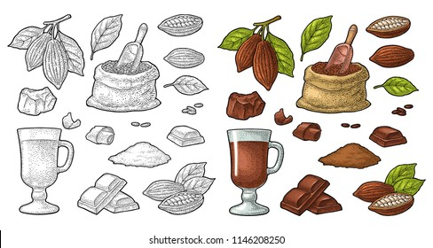 Chocolate piece, bar, shave. Fruits of cocoa with leaves and beans. Vector vintage black and color engraving illustration. Isolated on white background. Hand drawn design element for label and poster
