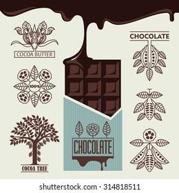 chocolate. products from cocoa bean. graphic image of the cocoa bean.