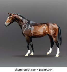 Chocolate-colored horse