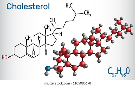 Cholesterol molecule. Structural chemical formula and molecule model. Vector illustration
