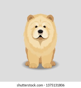 Chowchow Puppy Vector Illustration. Dog isolated