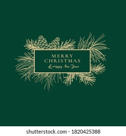 Christmas abstract card with fir and pine branches and cones. Botanical illustration with coniferous. Vector winter card. Green background and golden pattern.