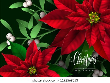 Christmas Background with Bright Red Poinsettia Flowers and Mistletoe