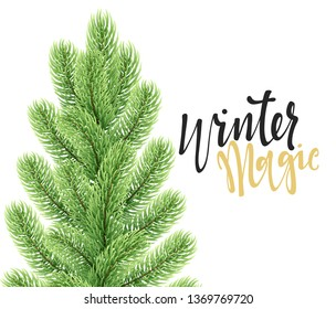 Christmas background with fir branches. Greeting card and banner. Vector illustration
