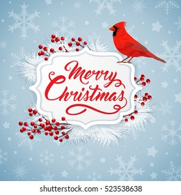 Christmas background with red berries, white fir branch and cardinal bird. Merry Christmas lettering. Design for greeting card.