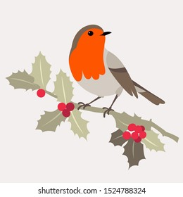 Christmas bird. Robin bird sits on sprig of Holly with berries. Vector illustration