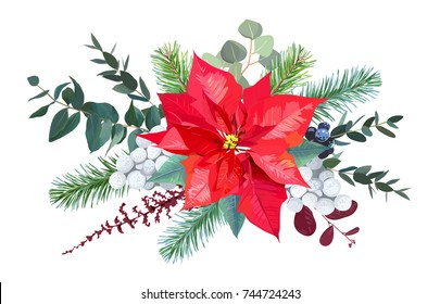 Christmas bouquet arranged from red poinsettia, parvifolia eucalyptus, brunia, fir branch, mix of plants and berries. Cute holiday greenery.Watercolor style set. All elements are isolated and editable