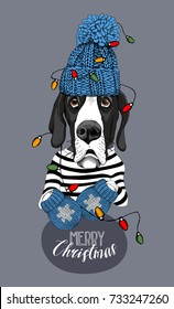 Christmas card. Great Dane Dog in a striped cardigan, in a blue knitted cap, mittens and with a bright garland. Vector illustration.