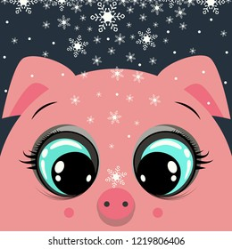 Christmas card. Pink pig's head with open eyes on dark background. White snowflakes fall on top of the pig.