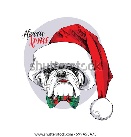 b5969368b96 Christmas card. Portrait of a Bulldog in a Santa s cap and in a bow tie