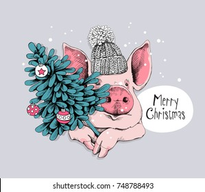 Christmas card. Portrait of the pink Pig in a knitted cap and with a fir-tree. Vector illustration.