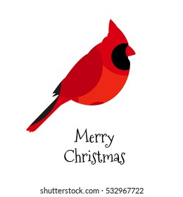 Christmas card with Red cardinal. Vector. Flat design.