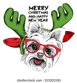Christmas card. Yorkie Puppy portrait in mask Santa's antler reindeer and glasses. Vector illustration.