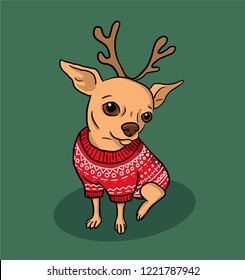Christmas chihuahua dog cartoon illustration. Dog in sweater and antlers