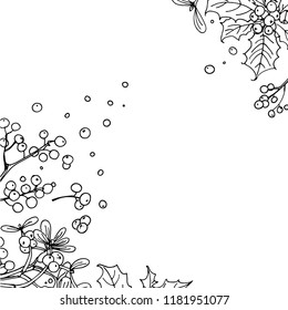 Christmas decor, plants line drawn on a white background. Sketch of berries and leaves. Winter berries, mistletoe, holly