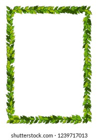 Christmas decorations with holly leaves, Vertical frame with copy space, Illustration for xmas and new year design.