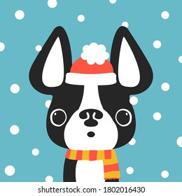Christmas dog cute cartoon vector portrait. Puppy French bulldog wearing  scarf. Winter, Christmas, pets, dog lovers theme design element, flat contemporary style