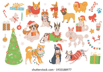 Christmas dogs cartoon characters set with fir tree, flat vector illustration isolated on white background. Dogs of various breeds in Santas Christmas hats.