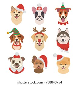Christmas Dogs faces collection. Vector illustration of funny cartoon different breeds dogs in Christmas costumes. Isolated on white